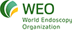 World Endoscopy Organization